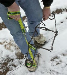 Responsible Pet Owners | Wildlife | Traps